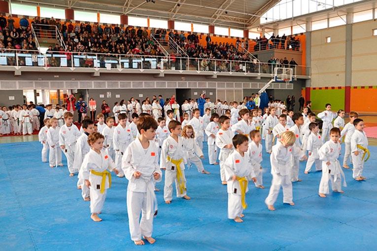 Club Kimé y Shotokan Villoslada destacan en el torneo Diputación 0 (0)