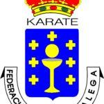 Campeonato Gallego