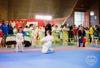 Buenos resultados para los clubes villanovenses en los Judex de karate