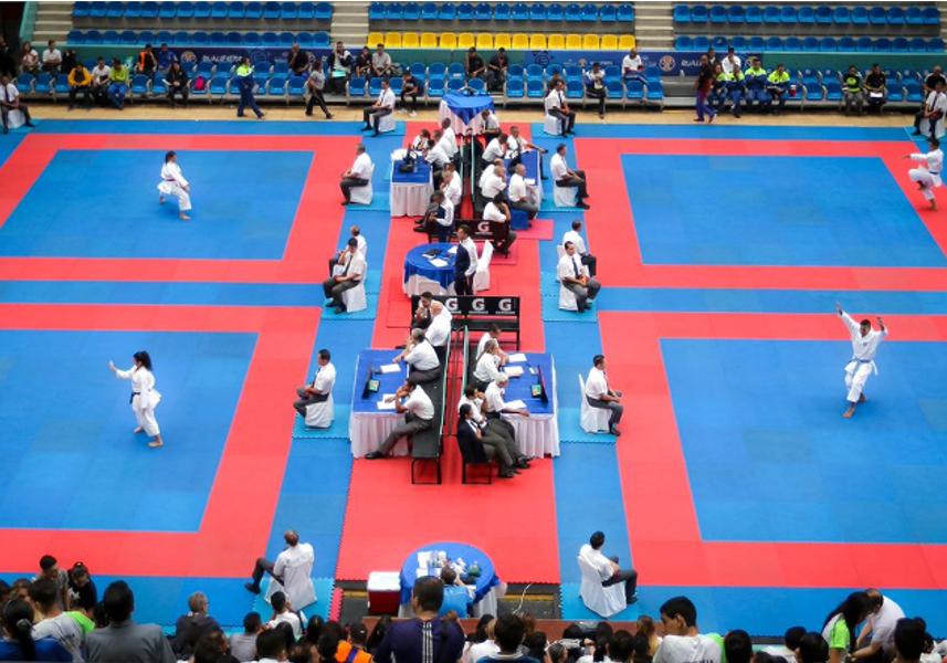 800 atletas participan en la XXVI Copa Internacional Simón Bolívar 0 (0)
