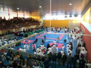 El Kárate El Barco de Ávila conquistó una docena de medallas en el VIII Campeonato Valle del Ambroz