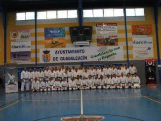Un centenar de alumnos participaron en el III curso de kárate