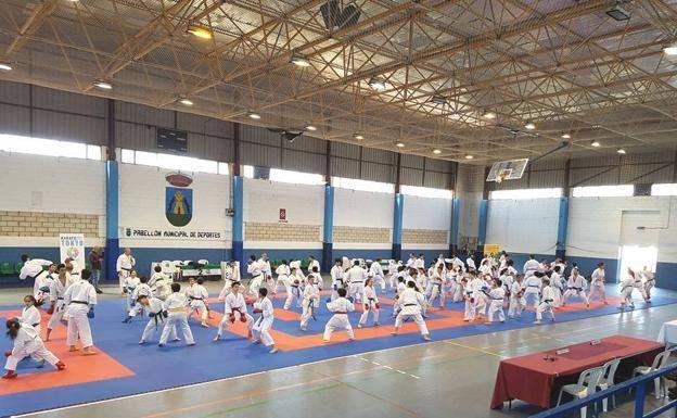 La Escuela de Karate de Talayuela participa en el Campeonato de Extremadura de Karate