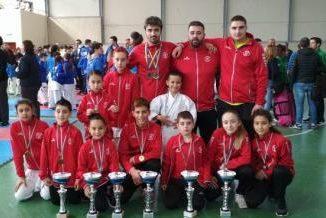 El Waseda de kárate logra trece medallas en los Campeonatos de Asturias