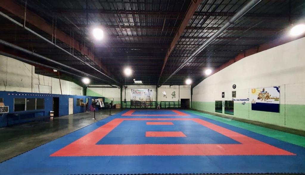 El karate se prepara ante la «nueva normalidad»
