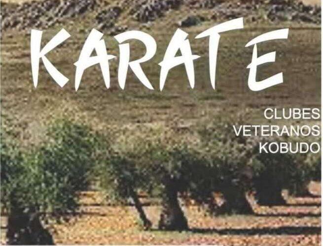 Los karatecas Torrijeños se llevan 7 medallas en el campeonato regional de clubes y veteranos 0 (0)