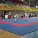 Protegido: Mi explicación a las reglas de kumite con dos jueces